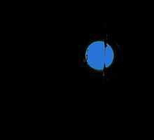Blue Moon By Picasa by Fara