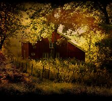 The red house by nefetiti