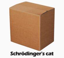 Schrödinger's cat by TexTs
