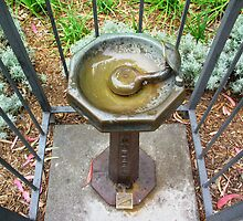 A Public Drinking Fountain © by Ethna Gillespie