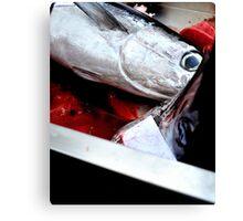 Kill fish! Canvas Print