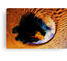 Mirror Pool Canvas Print