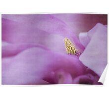 magnolia dream II (blue) Poster
