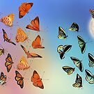Let's Count Kisses - Butterflies 2 by Karen  Hull