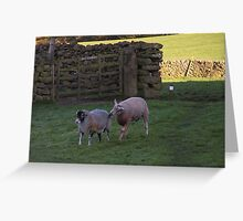 Baaa, don't be like that! Greeting Card