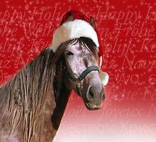 Ho-ho-ho Horse  by chrstnes73