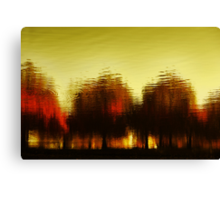 Eleven Shades of Red Canvas Print