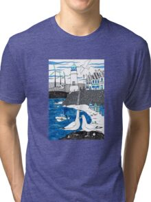 Seaside seagulls from Dover Tri-blend T-Shirt