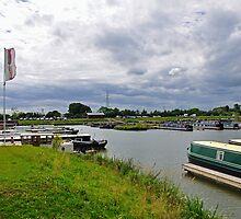 Mercia Marina, Willington by Rod Johnson
