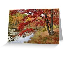 MapleTree In Autumn Greeting Card