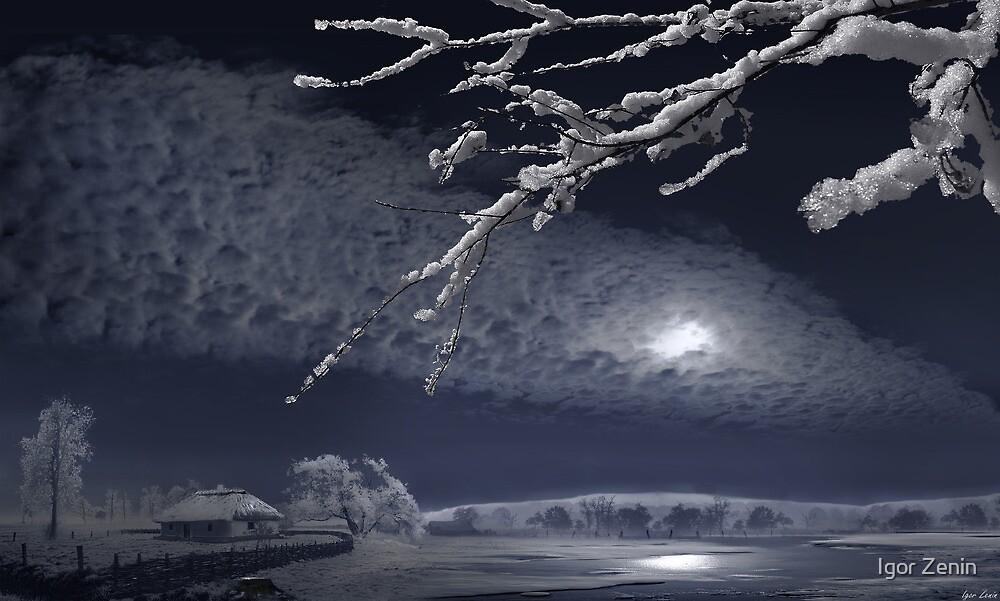 Winter Moonlight by Igor Zenin