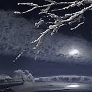 Winter Moonlight by Igor Zenin