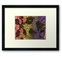Critters In Hiding Framed Print