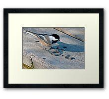 Birds' Buffet Framed Print