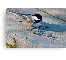 Birds' Buffet Canvas Print