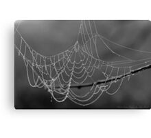 Pearly Web Canvas Print