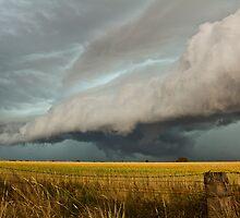 HP storm cell, Urana Plains, N.S.W by Troy Barrett