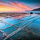 Tessellated Pavement, Eaglehawk Neck, Tasmania by Matthew Stewart