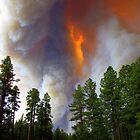 Fire Approaching by Eric  Neitzel