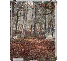 Potomac Woodlands iPad Case/Skin