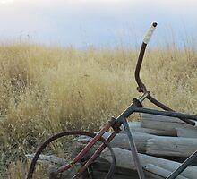 Resting Bike by Kathi Huff