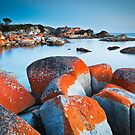Binalong Bay (II), Bay of Fires, Tasmania by Matthew Stewart
