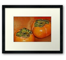persimmon fruits Framed Print
