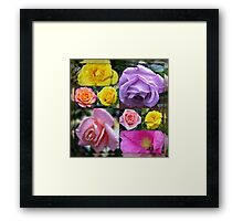Just Roses Collage Framed Print