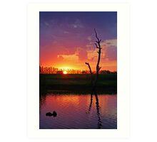 Sunset at Elmore Art Print