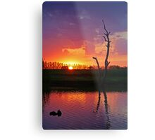 Sunset at Elmore Metal Print