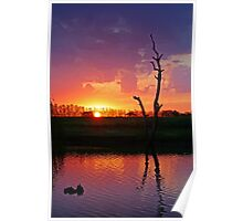 Sunset at Elmore Poster