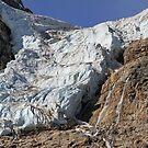 Angel Glacier by Teresa Zieba