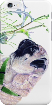 Pug & Nature iPhone & iPod Cases by Patricia Barmatz