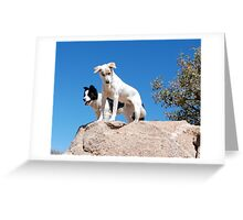Oakley and Kitty Greeting Card