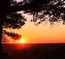 sunset at the park by ANNABEL   S. ALENTON