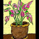 Colorful Potted Plant by James Lewis Hamilton