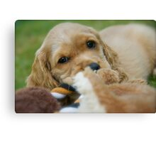 Tucker with Toys Canvas Print