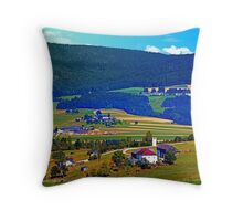Some boring autumn scenery Throw Pillow