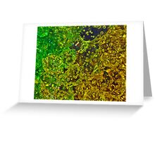 Lemon-Lime Greeting Card
