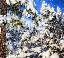 Let it Snow by Saija  Lehtonen