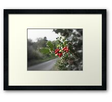 Holly & Berries Framed Print