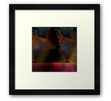 nordic Framed Print