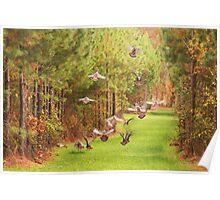 Turkeys In Flight Poster