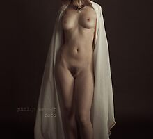 Stillness by Ayla Maya