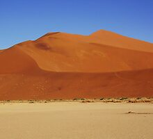 Amazing sand dunes in the Namibian desert by kimmylowe1986
