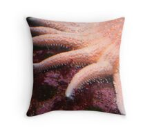 Starfish in Pink Throw Pillow