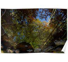 Reflective Stream Poster