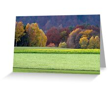 Canola field in fall Greeting Card