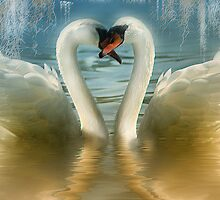 Natures Love by Elaine  Manley
