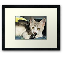 Love affair with the lens cap Framed Print